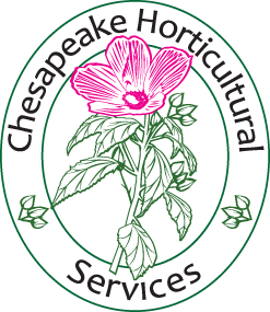 Final CHS logo